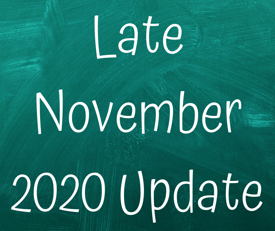 LATE NOVEMBER 2020 COVID-19 UPDATE